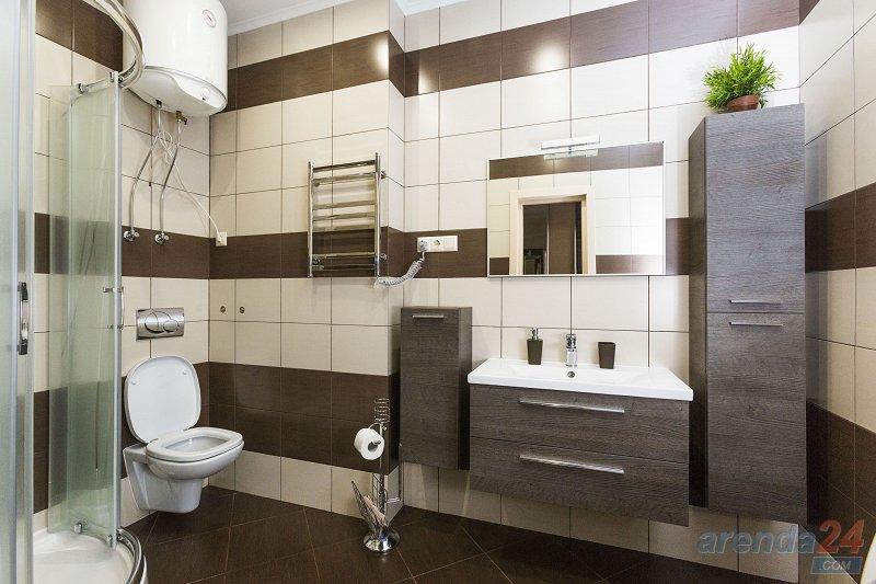 1-комнатная квартира посуточно, Киев, ул. Жилянская, 118 (7)