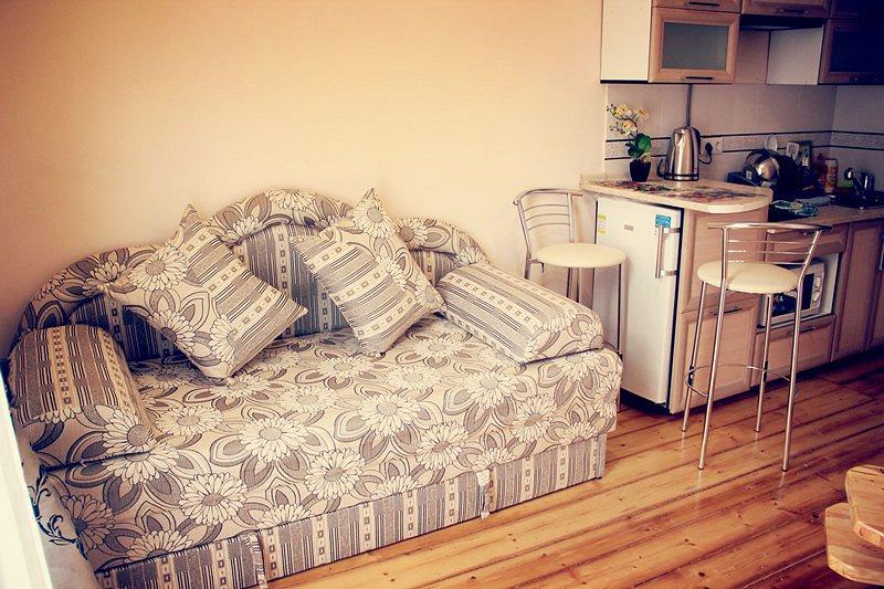 1-комнатная квартира посуточно в Ивано-Франковске. ул. Гетьмана Мазепы, 3 (10)