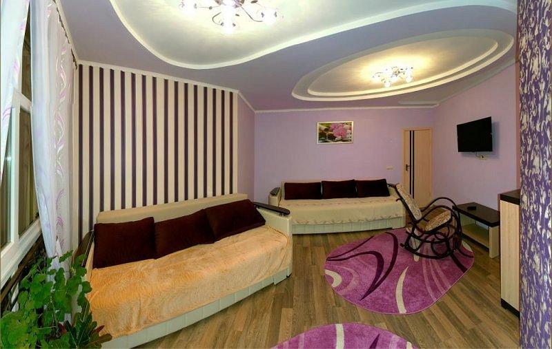 Аренда VIP квартиры в ЦЕНТРЕ Трускавца (2)