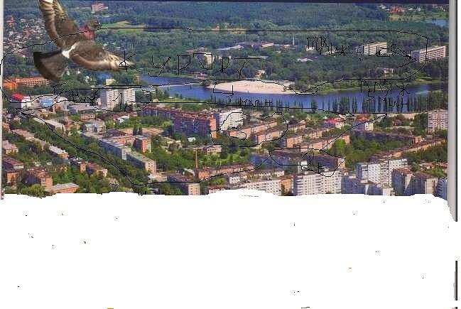 Миргород. Квартира с видом на курорт и пляж. Ремонт. Центр (9)