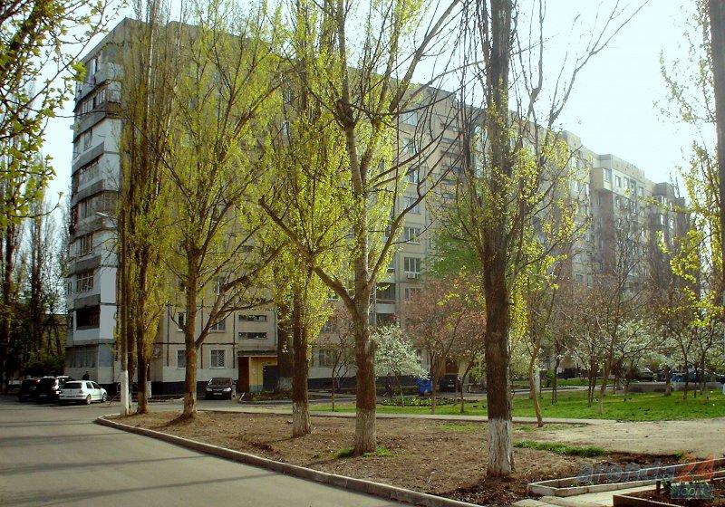 1-комнатная квартира посуточно в Одессе. Киевский район, ул. Ильфа и Петрова, 29 (10)