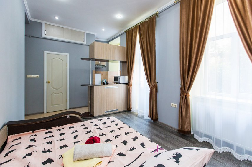 Квартира-студия для пары (2)