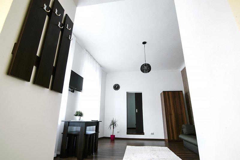 Сучасна двокімнатна квартира біля Оперного театру! (3)