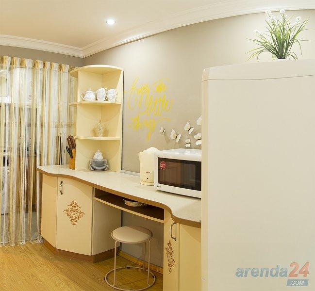 Красивая, уютная, светлая квартира (5)