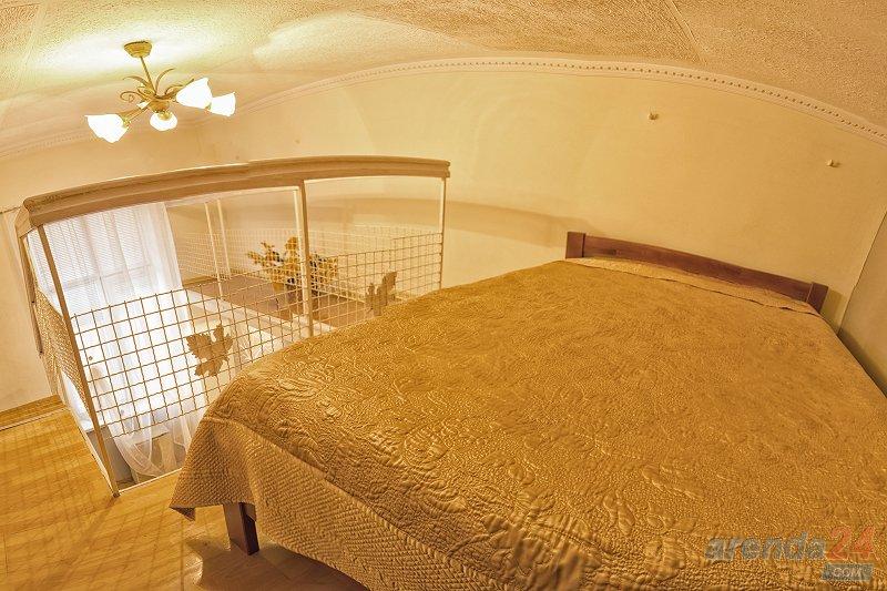1-комнатная квартира посуточно, Львов, ул. Городоцкая, 87 (7)