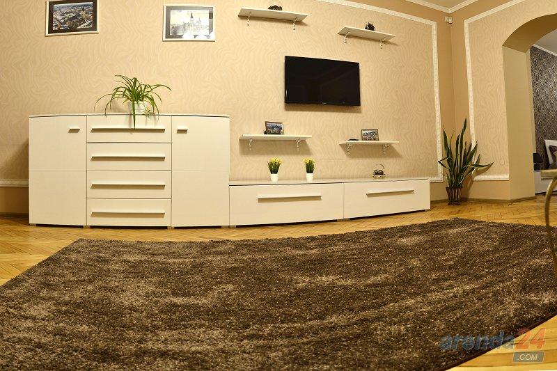 2-комнатная квартира посуточно, Львов, ул. Городоцкая, 111 (7)