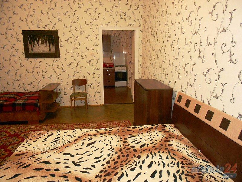 1-комнатная квартира посуточно, Львов, ул. Гоголя, 3-а (2)