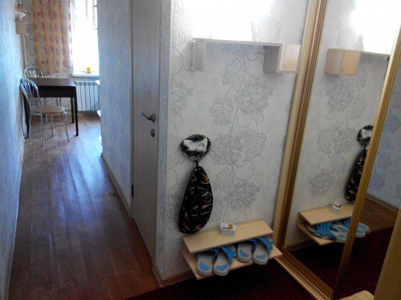 Уютная квартира посуточно на левом берегу - Днепр (10)