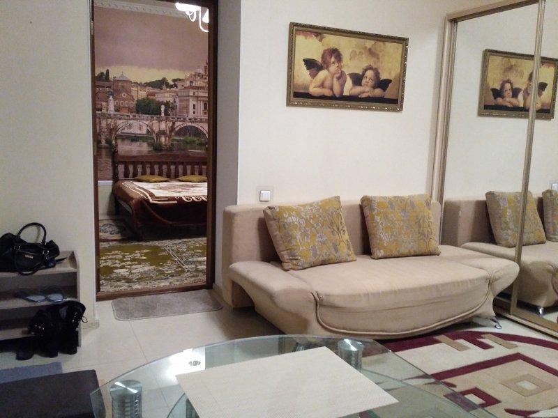 Красивая уютная квартира с ремонтом и новой мебелью в историческом центре города со своим двориком (1)