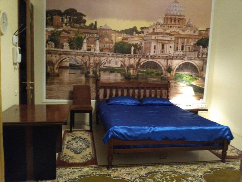 Красивая уютная квартира с ремонтом и новой мебелью в историческом центре города со своим двориком (6)