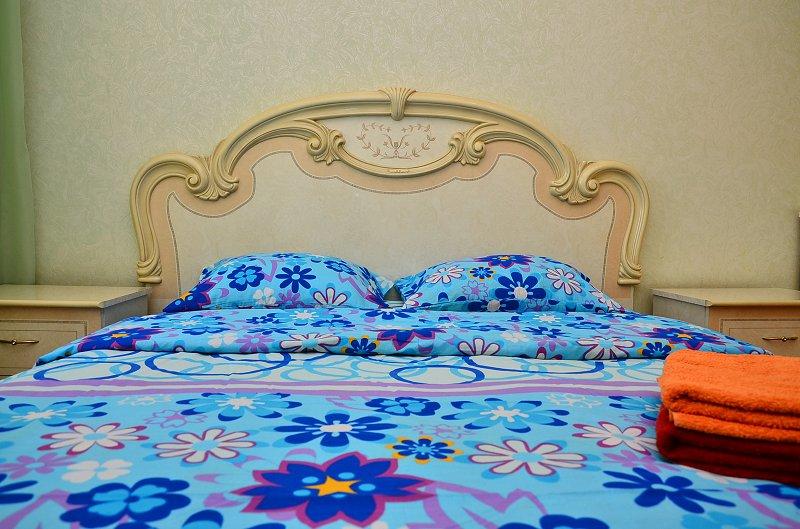 Сдам двухкомнатную квартиру с ремонтом в центре Киева (4)