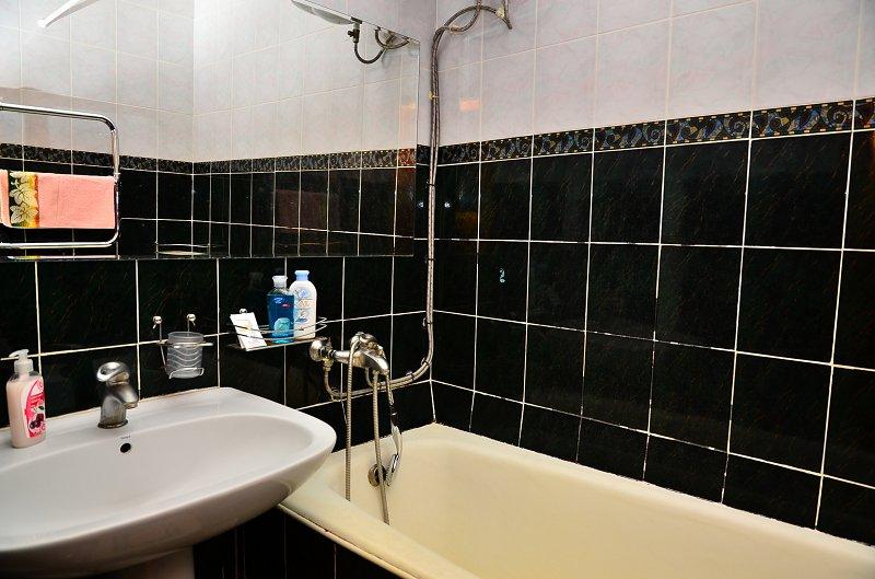 Сдам двухкомнатную квартиру с ремонтом в центре Киева (10)