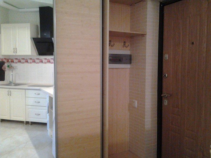 Апартаменты на Боткинской 2а, 4эт (4)
