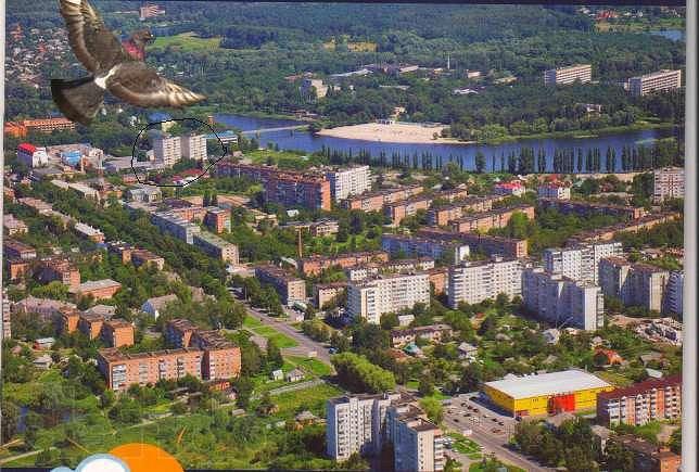 Миргород. Центр. До входу на курорт 480 кроків (2)