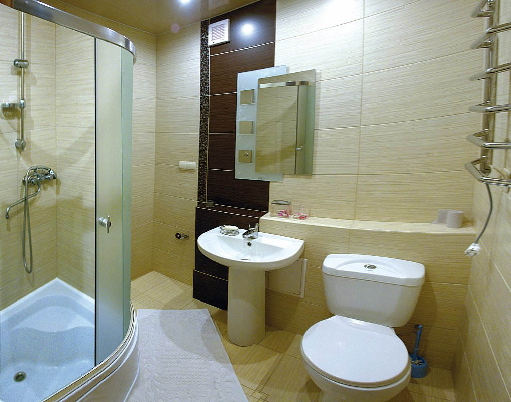 1-комнатная квартира посуточно в Трускавце (1)