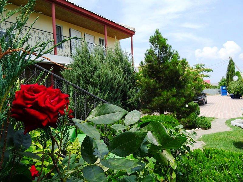 Оленевка Крым снять недорогое жилье мыс Тарханкут (1)
